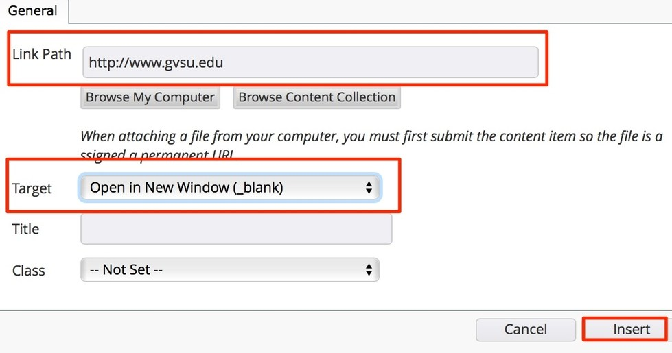 type the URL in the link path field, change target to open in new window, and click insert